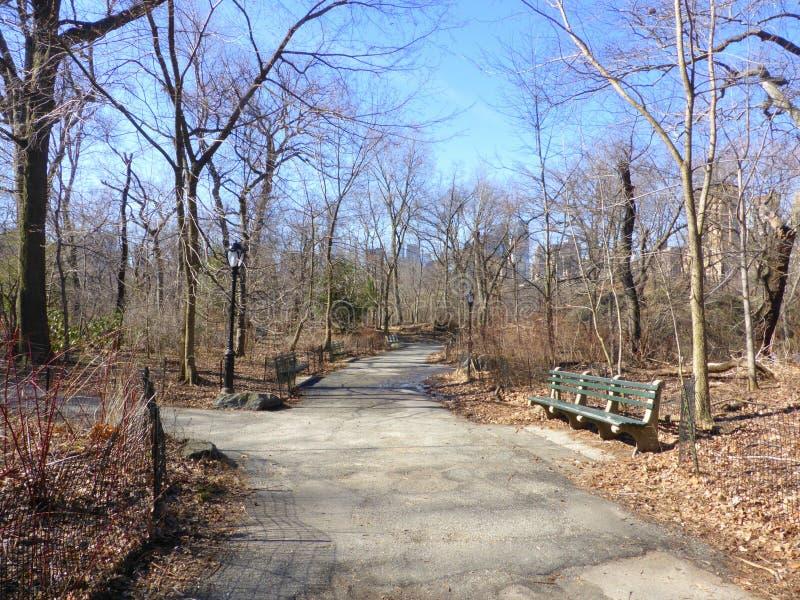 валы Central Park стоковые изображения rf