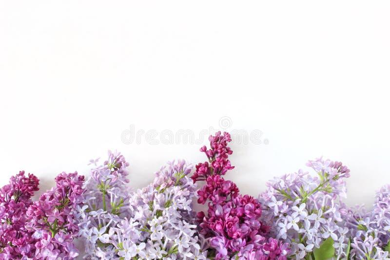 Введенное в моду фото запаса Сцена весны женственная, флористический состав Декоративное знамя сделанное красивой фиолетовой сире стоковое изображение