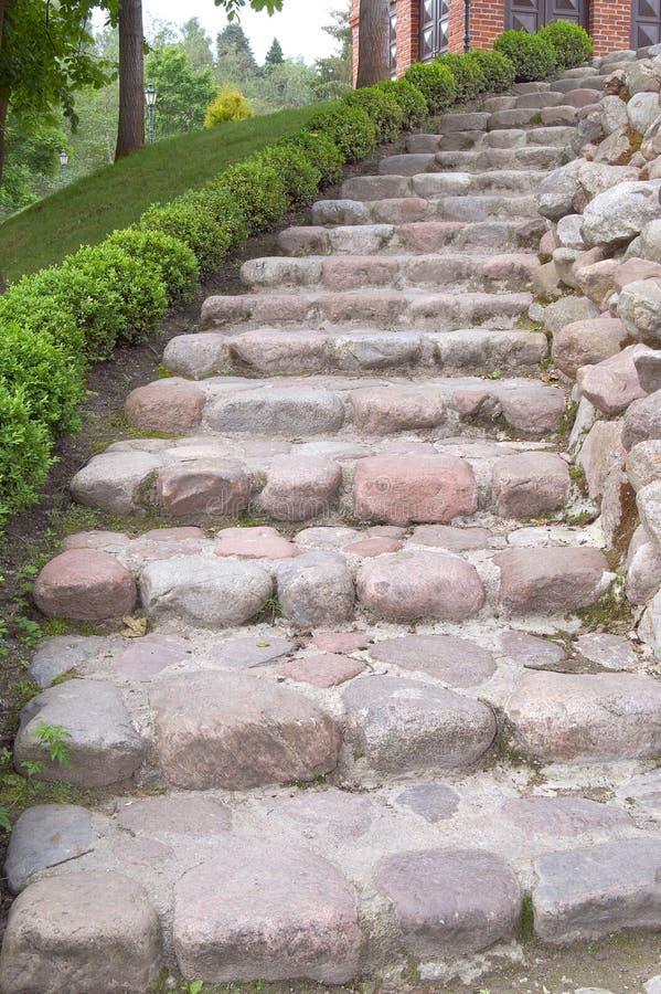 вдоль камня шагов flowerbed естественного стоковые изображения rf