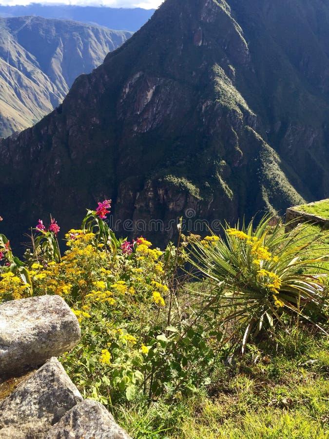 вдоль тропки inca стоковые изображения rf