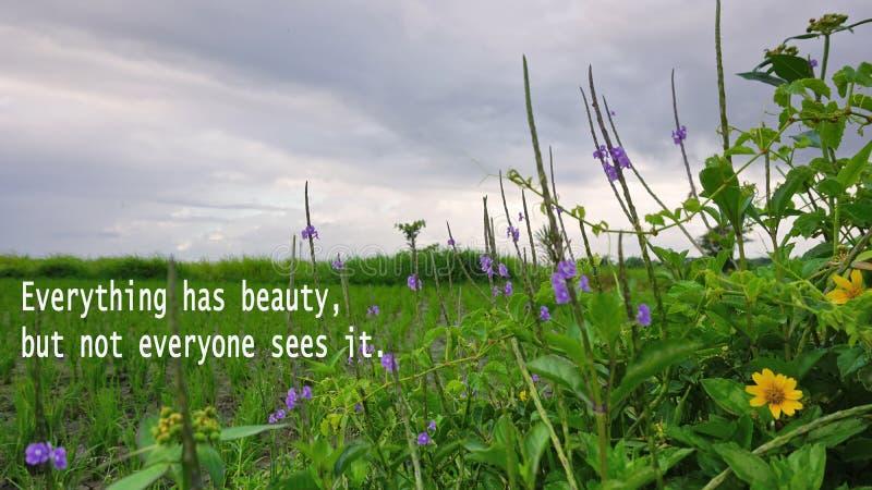 Вдохновляющая цитата - все имеет красоту, но не каждый видит его С травой природы зеленой и предпосылкой цветков под синью стоковое фото