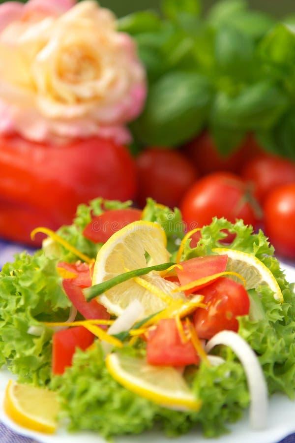 Вегетарианский салат Бесплатное Стоковое Изображение