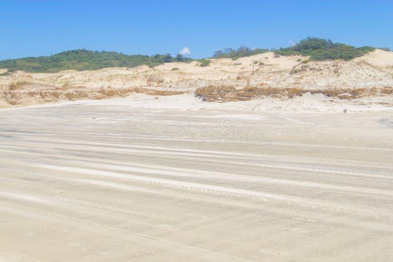 Вегетация над дюнами на парке Itapeva в пляже Torres стоковое фото