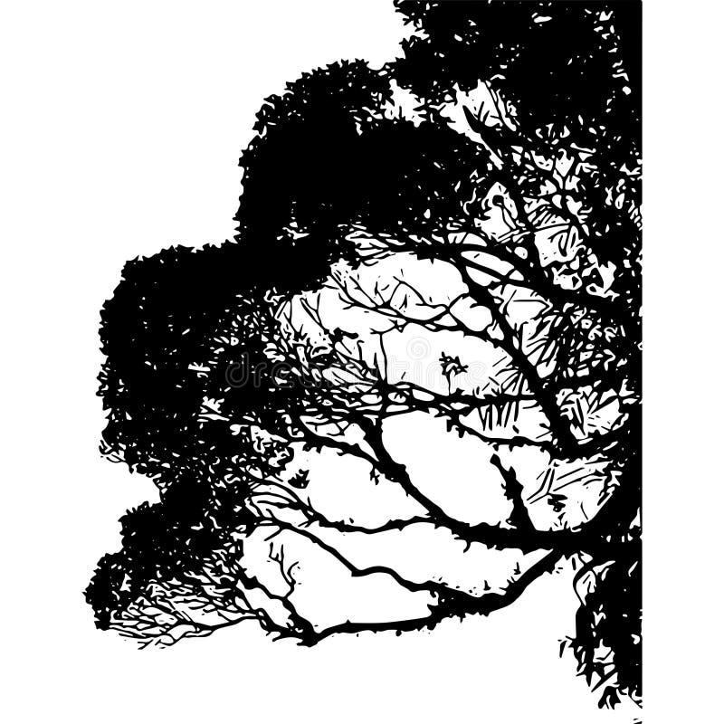 Вегетация около загородки бесплатная иллюстрация