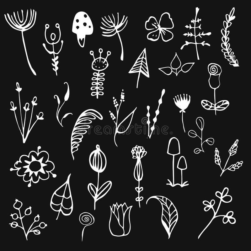 Вегетация открытки, листья, хворостины, цветки, грибы, нарисованные вручную иллюстрация вектора
