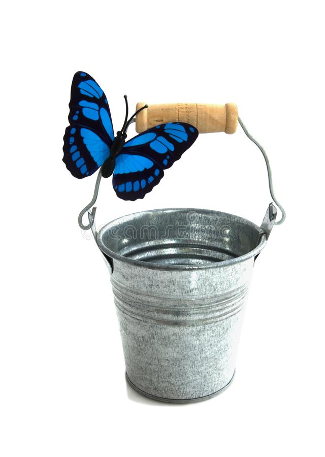 Ведро с бабочкой стоковое фото