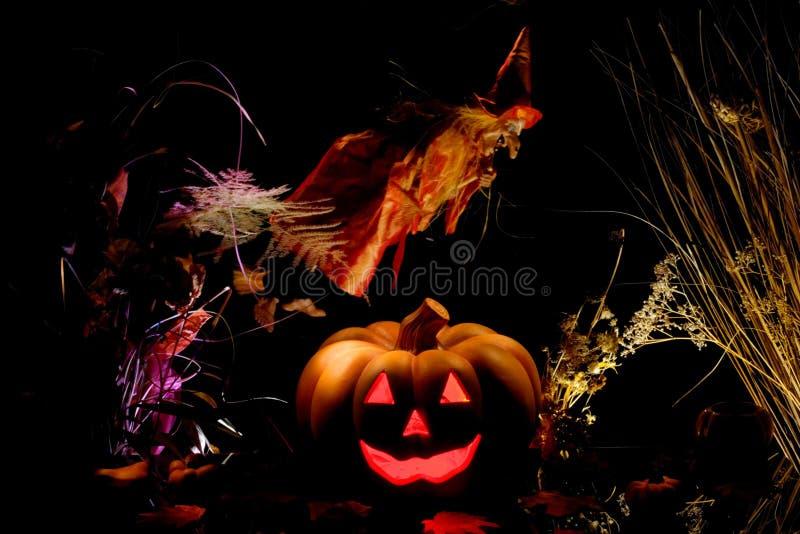 ведьма тыквы halloween стоковые фото