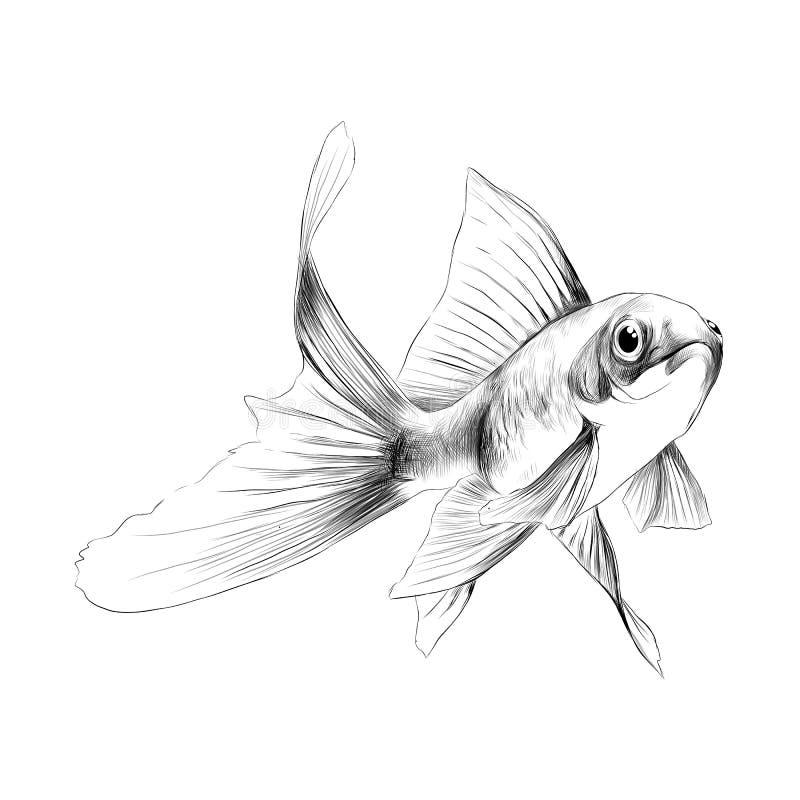 Векторные графики эскиза рыбки бесплатная иллюстрация