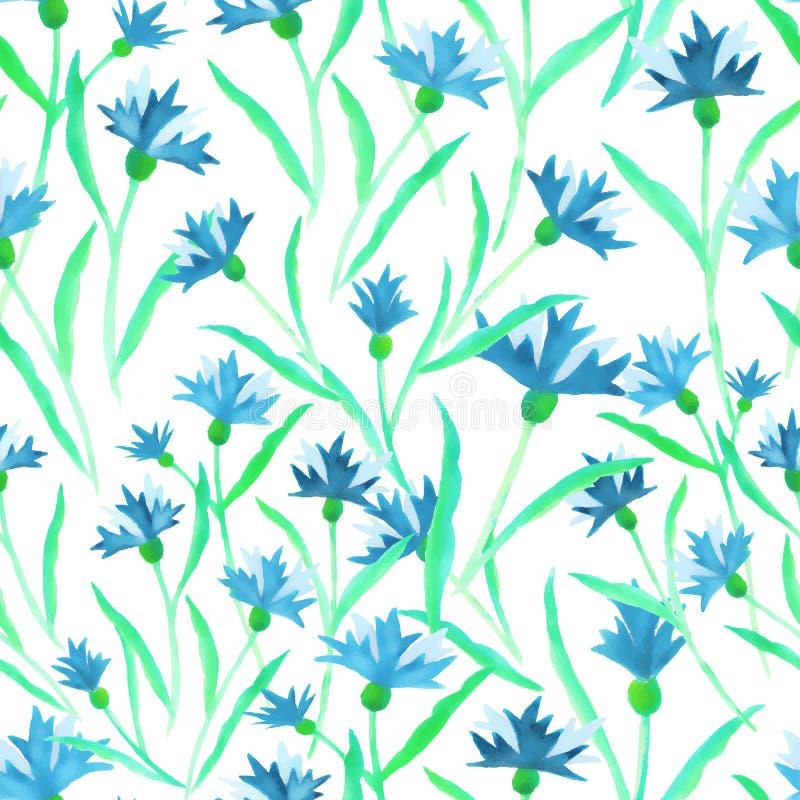 Вектор акварели картины флористических голубых cornflowers безшовный иллюстрация вектора