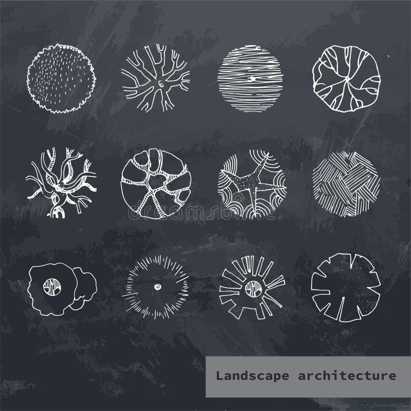 Вектор взгляда сверху установил различных деревьев Иллюстрация руки вычерченная для дизайна ландшафта, плана, карт Собрание дерев иллюстрация вектора