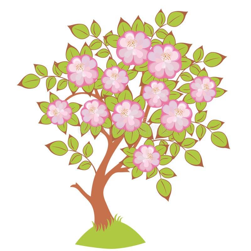 вектор вишни цветений бесплатная иллюстрация