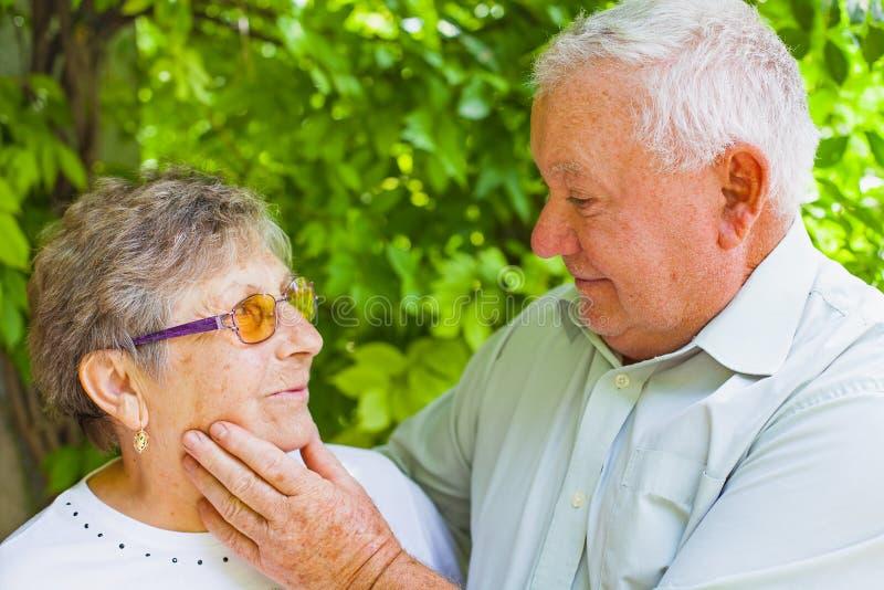 вектор влюбленности пар пожилой стоковое изображение