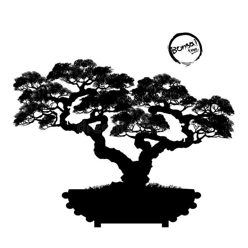 Вектор дерева бонзаев на предпосылке стоковое изображение