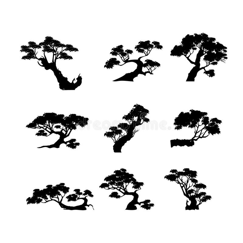 Вектор дерева бонзаев на предпосылке стоковое фото rf