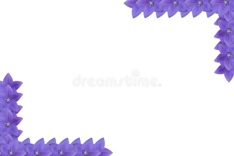 вектор детального чертежа предпосылки флористический стоковая фотография
