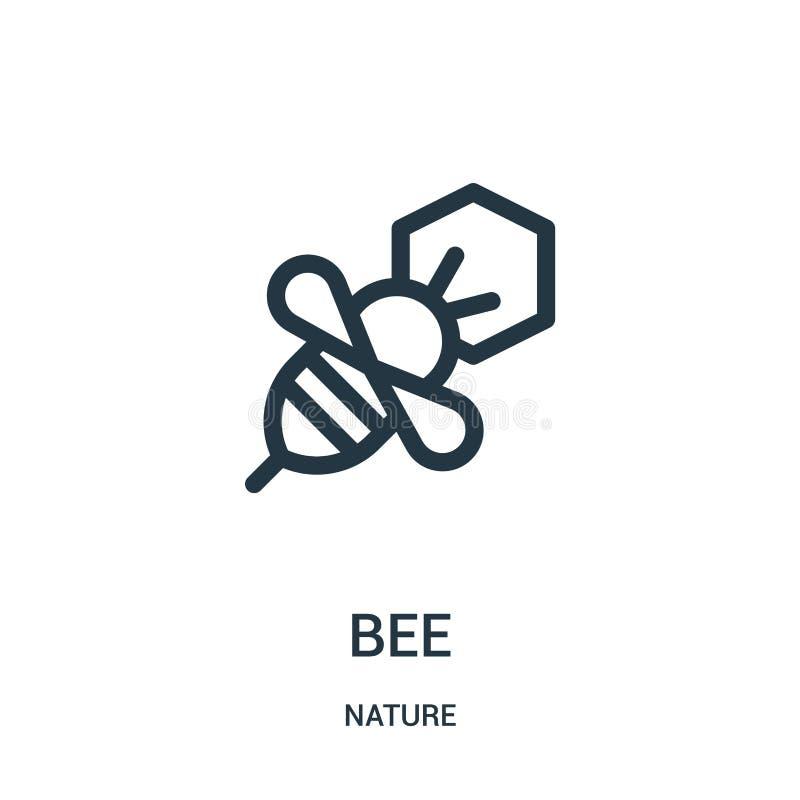вектор значка пчелы от собрания природы Тонкая линия иллюстрация вектора значка плана пчелы Линейный символ для пользы на сети и  иллюстрация вектора