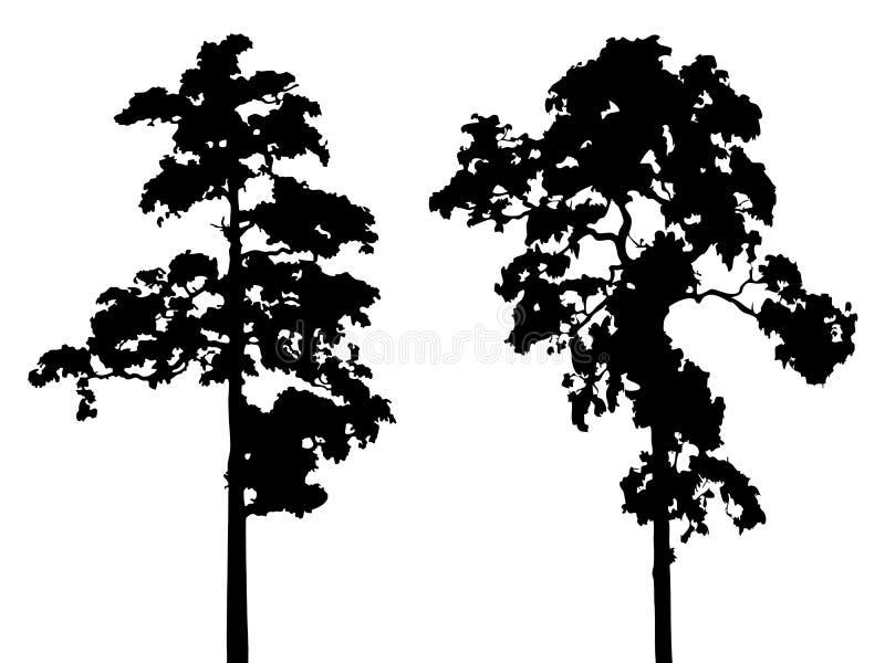 Вектор изолированный деревом иллюстрация вектора