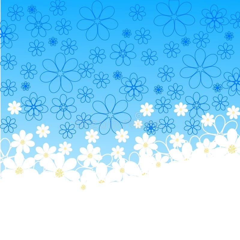 вектор иллюстрации голубых маргариток предпосылки иллюстрация вектора