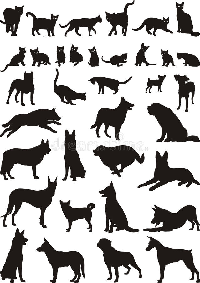 вектор иллюстраций собак котов стоковое изображение rf