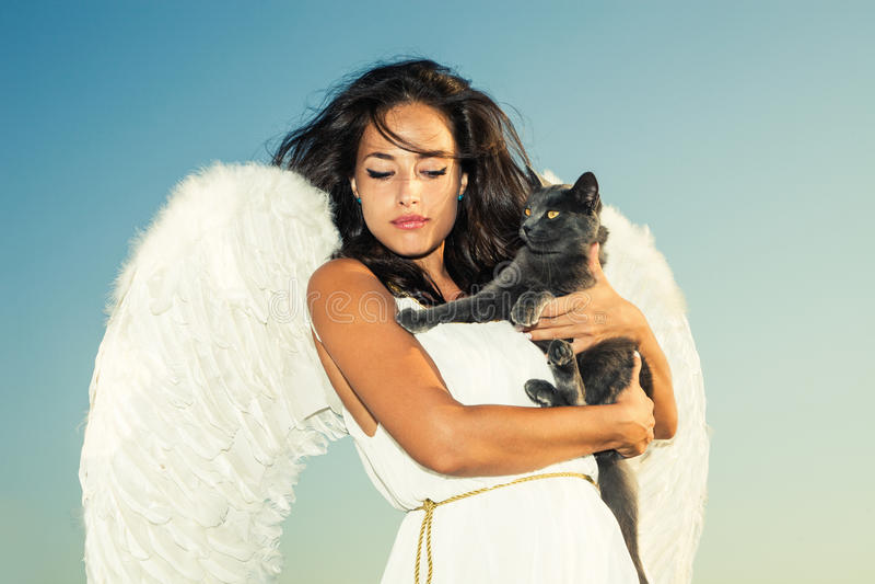 Download вектор иллюстрации кота ангела Стоковое Изображение - изображение насчитывающей фантазия, небо: 40580735