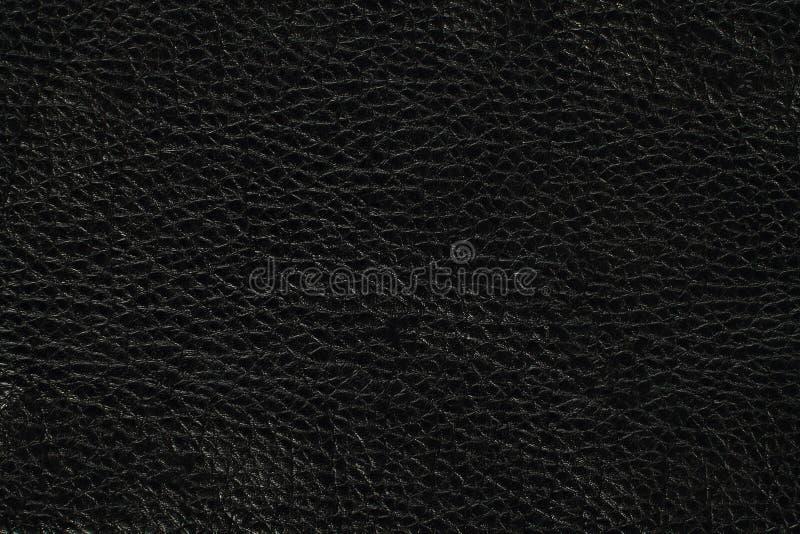 вектор кожи иллюстрации предпосылки eps10 стоковое изображение rf