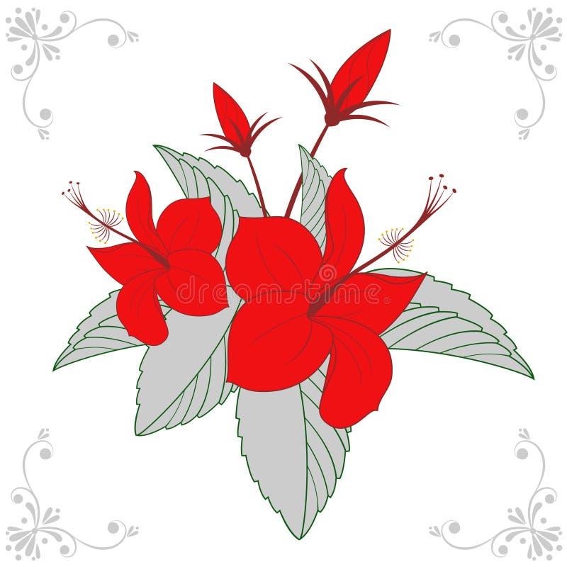 вектор конструкции флористический бесплатная иллюстрация