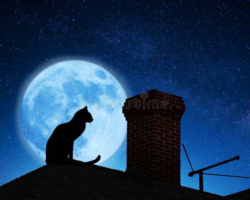 вектор крыши иллюстрации кота стоковое фото rf