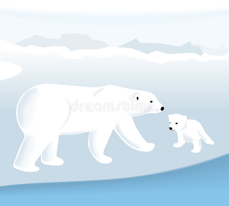 вектор медведя приполюсный бесплатная иллюстрация
