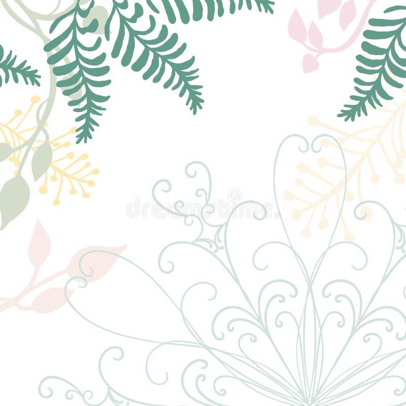 Вектор нарисованный рукой флористический с элементом дизайна шнурка и пастельными иллюстрациями природы зеленых папоротников плющ иллюстрация вектора