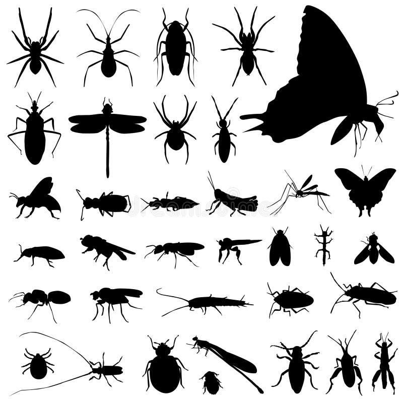 вектор насекомого установленный иллюстрация штока