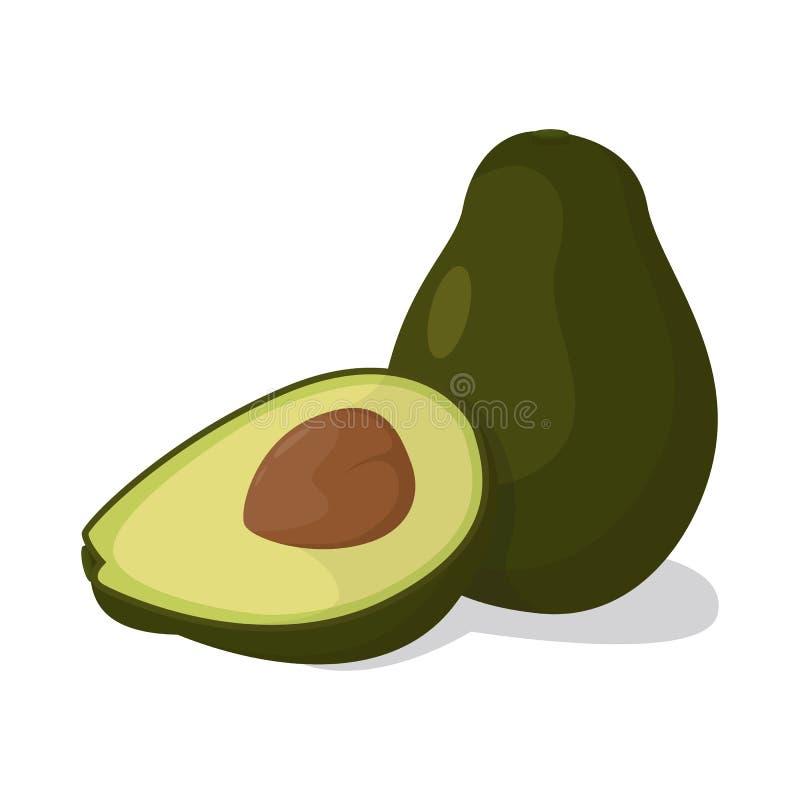 Вектор овощей авокадоа стоковые изображения