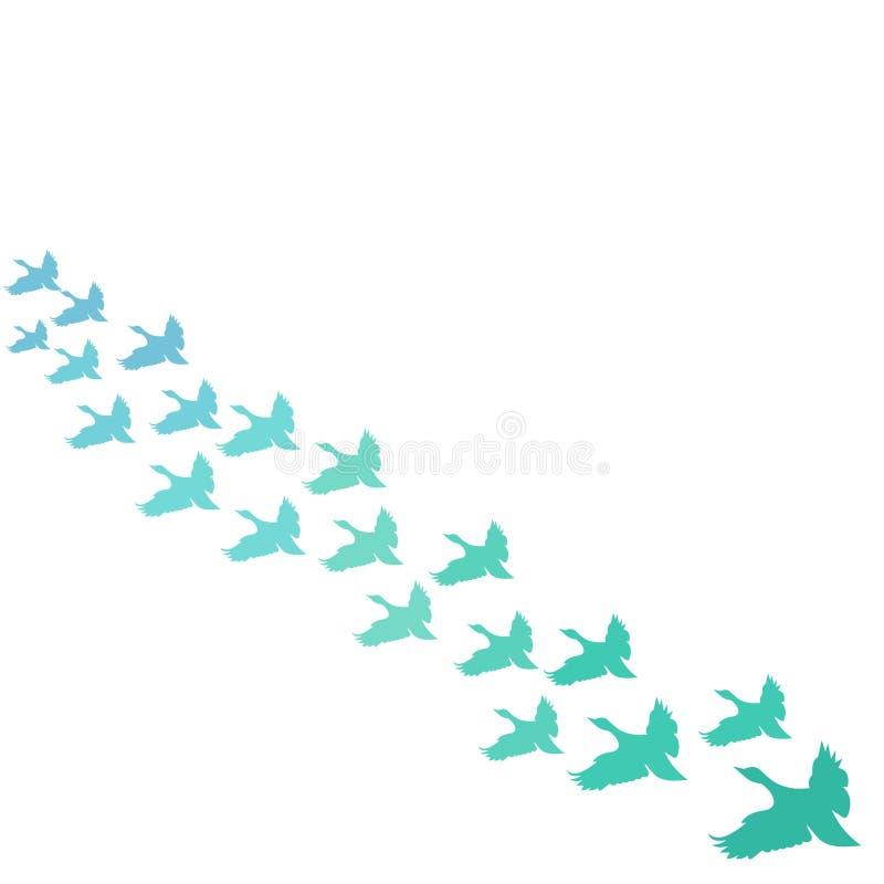 Вектор предпосылки летящих птиц бесплатная иллюстрация