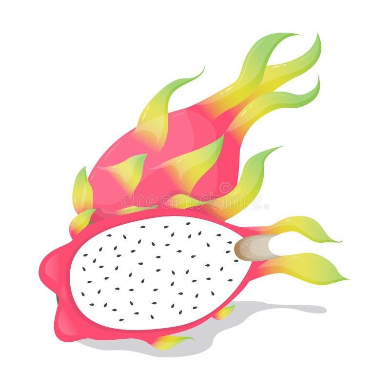 Вектор плодоовощ Pitaya стоковая фотография rf