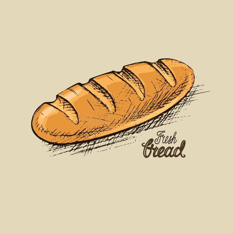 Вектор свежего хлеба бесплатная иллюстрация