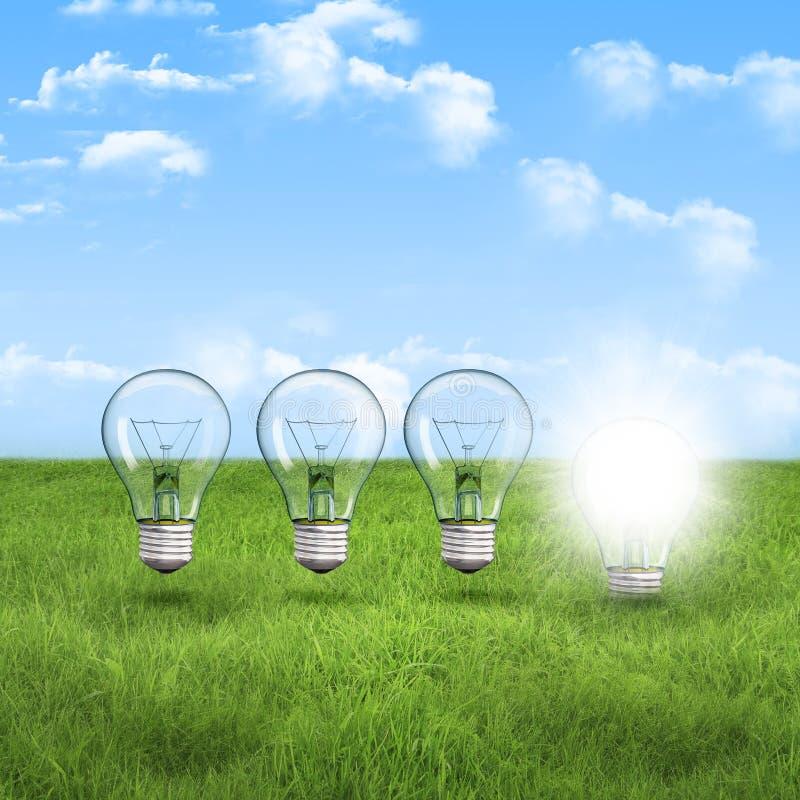 касается генетического картинка лампочка в траве баннер наносится