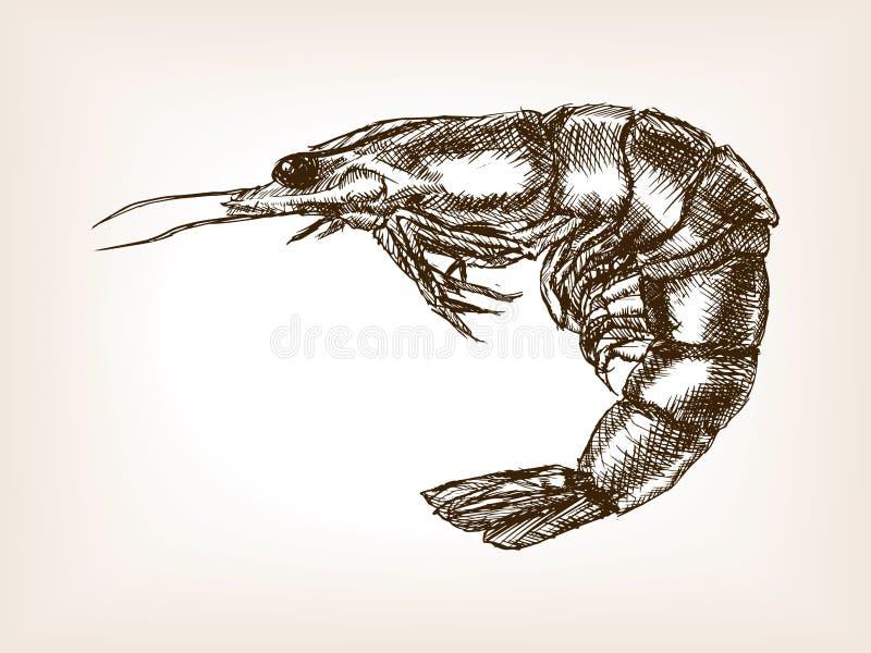 Вектор стиля эскиза креветки нарисованный рукой иллюстрация штока