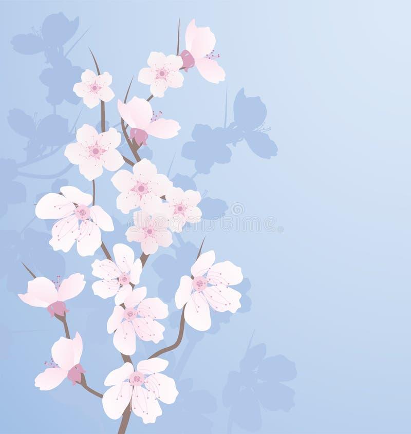 вектор тени вишни ветви иллюстрация штока