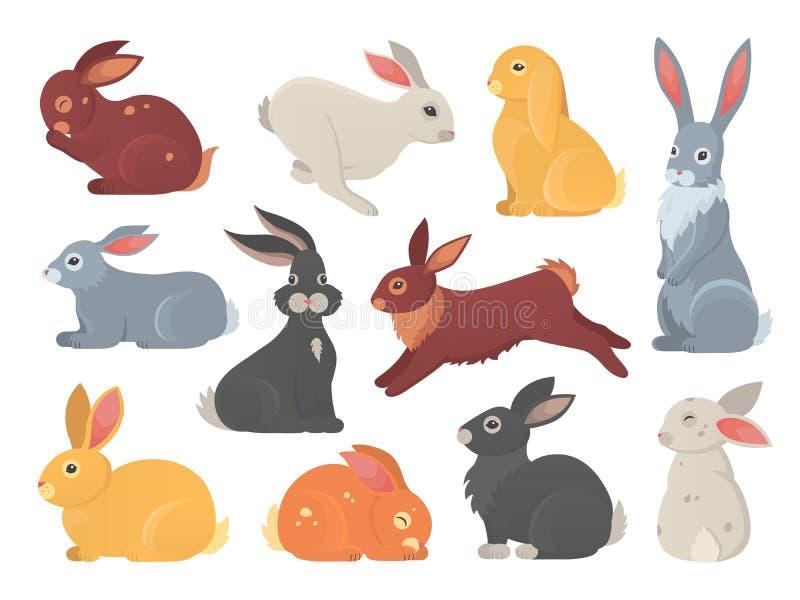 Вектор установил милых кроликов в стиле мультфильма Силуэт любимца зайчика в различных представлениях Животные зайцев и кролика к иллюстрация штока