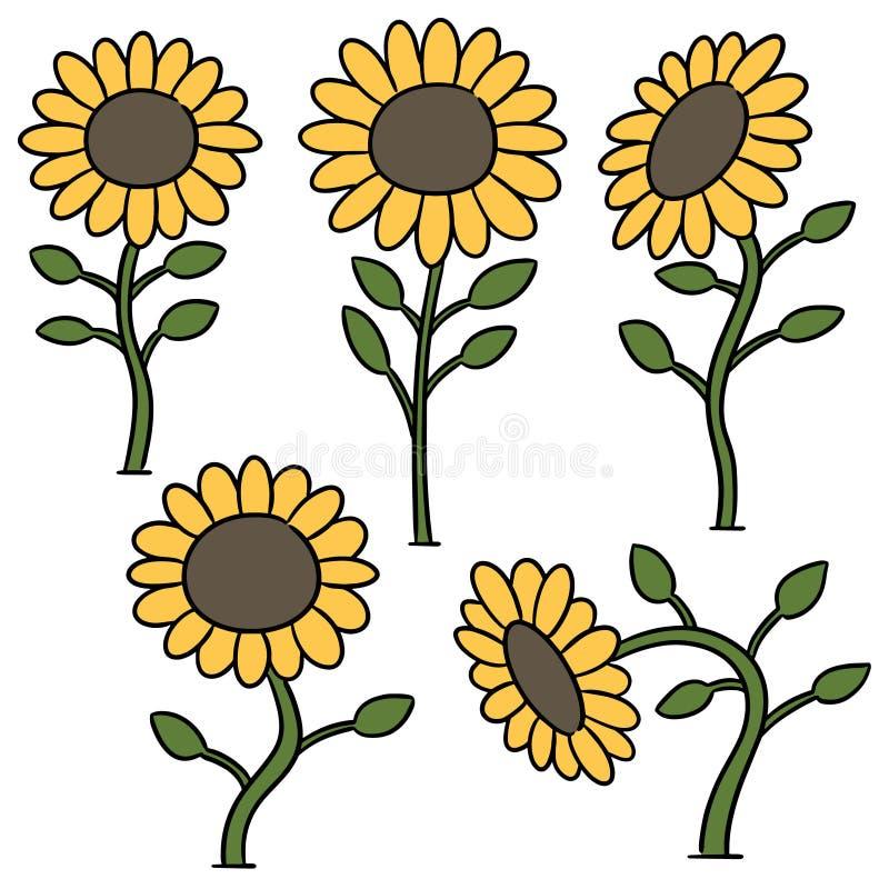 Вектор установил солнцецвета иллюстрация штока