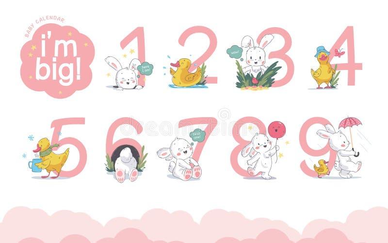 Вектор установил цифров/номеров календаря младенца с милым маленьким зайчиком & прогулка утки, улыбка, сидит изолированный на бел иллюстрация штока