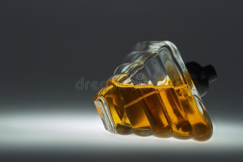 вектор дух сетки иллюстрации чертежа бутылки стоковые фото