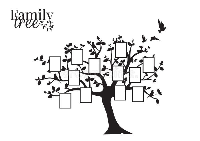Вектор фамильного дерев дерева с картинной рамкой, этикетами стены, оформлением стены, силуэтом летящих птиц на дереве иллюстрация штока