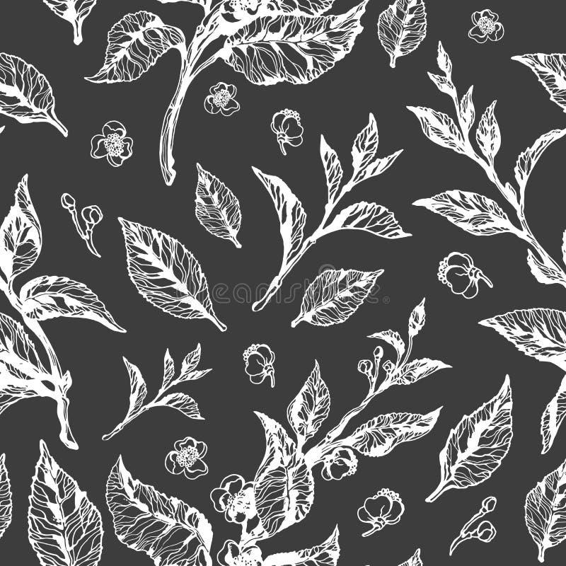 вектор флористической картины безшовный Куст чая бесплатная иллюстрация