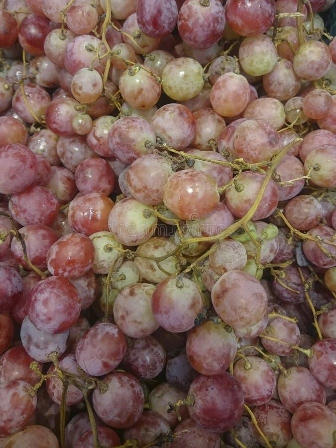 вектор формы виноградин предпосылки lfloral Органическая зрелая красная и белая виноградина на рынке Сбор концепции Виноградина в стоковое изображение