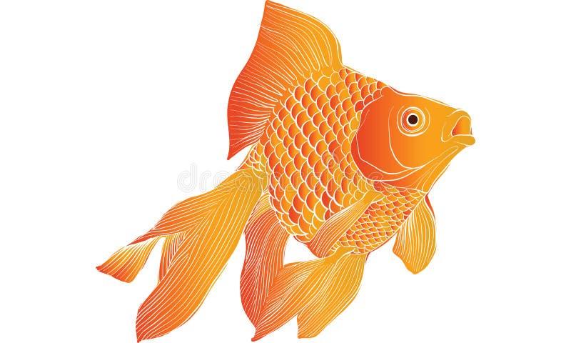 Вектор чертежа рыбки иллюстрация штока
