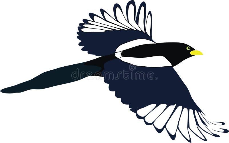 Вектор шаржа сороки летания стоковая фотография rf