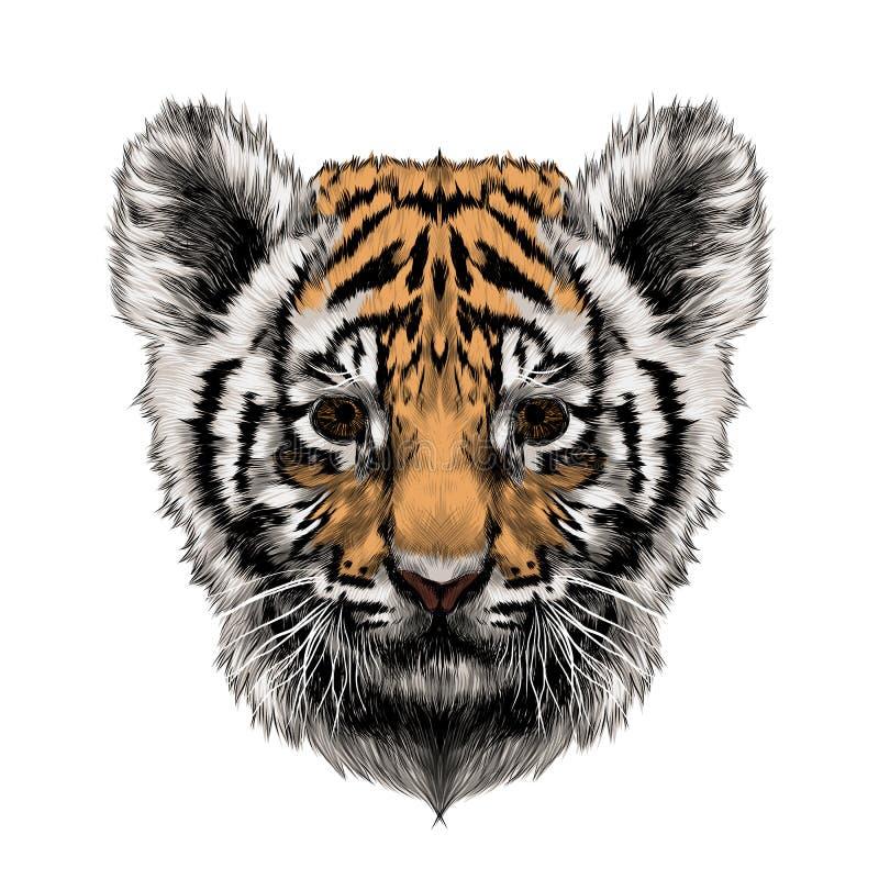 Вектор эскиза головы новичка тигра иллюстрация штока