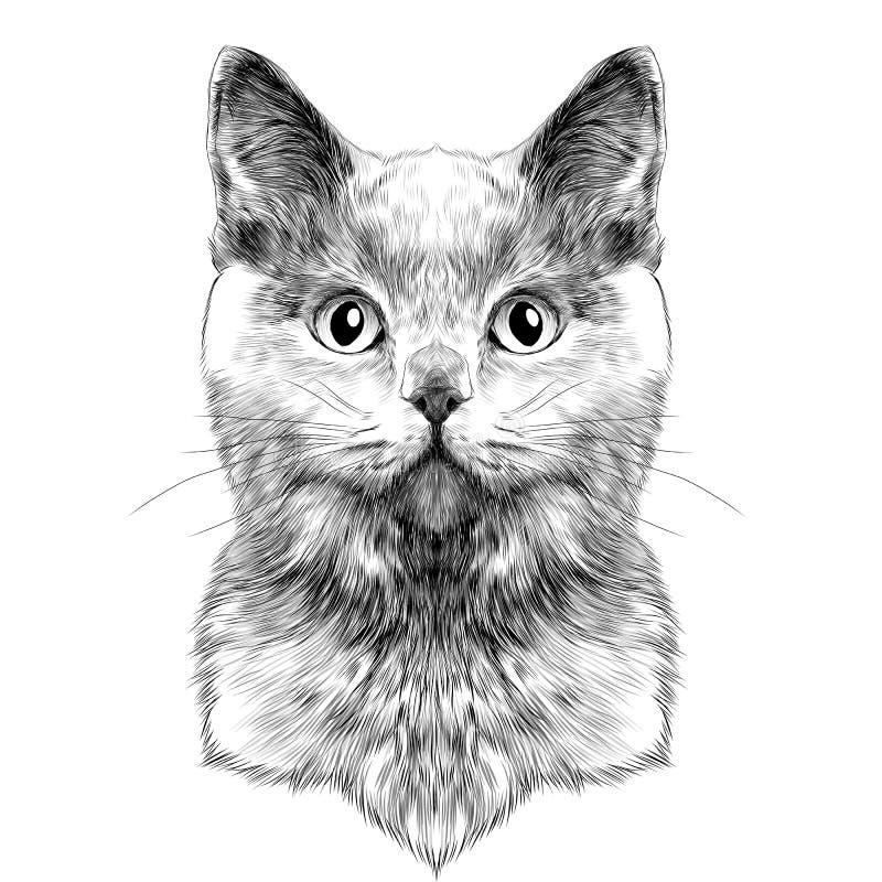 Вектор эскиза стороны кота бесплатная иллюстрация