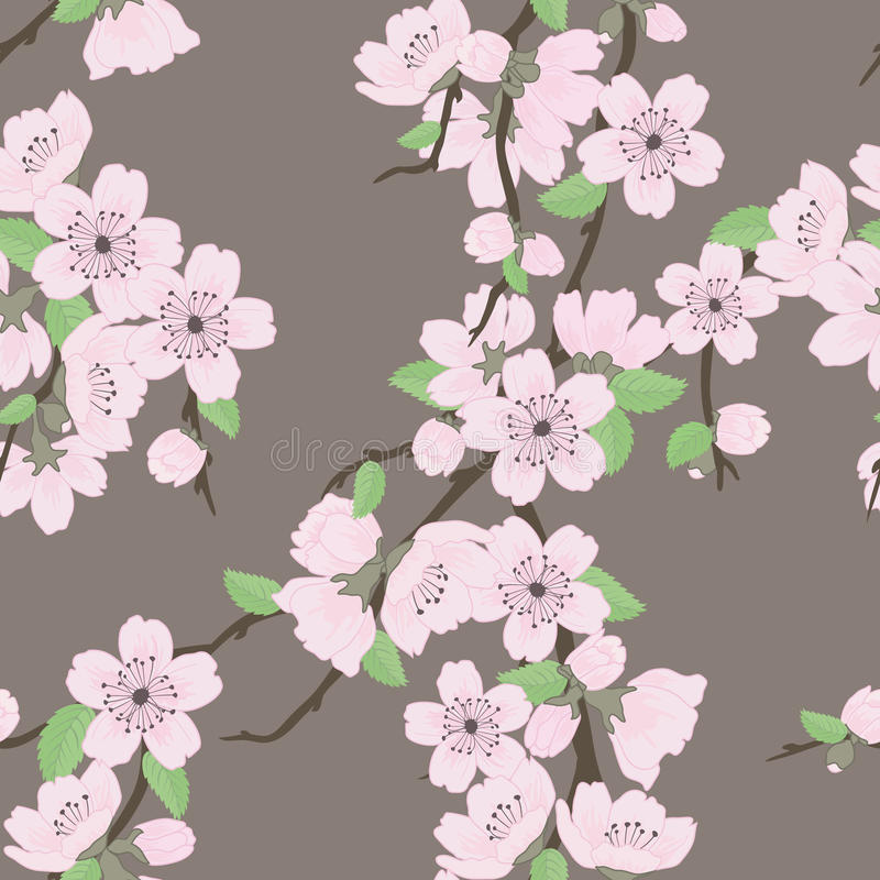 вектор sakura красивейшей картины безшовный бесплатная иллюстрация