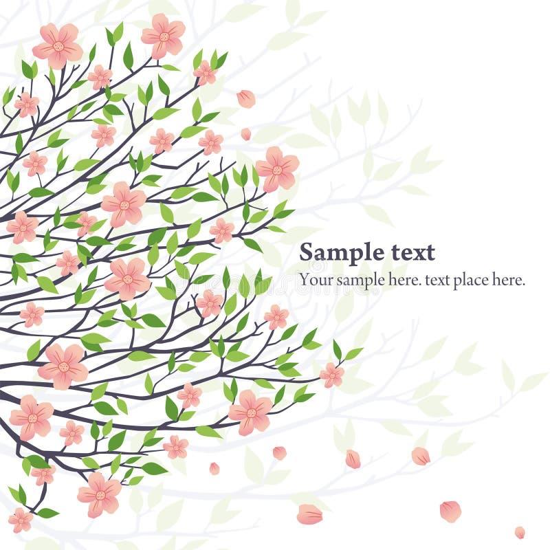 Вектор sakura иллюстрация штока